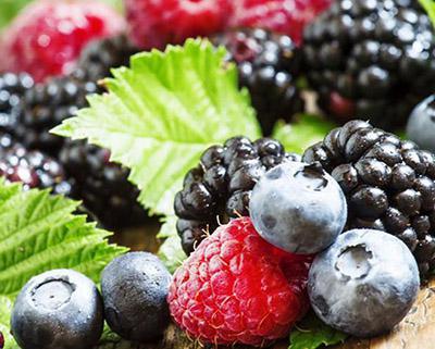 蓝莓、树莓、草莓